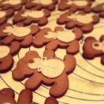 A lot of...Carlo. #cookies #bear  #pasticcioni  #igbergamo #igers #photoftheday #cute #chocolate #pastafrolla #kawaii #instagood  #instamood